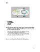 Photosynthesis and Cellular Respiration Test