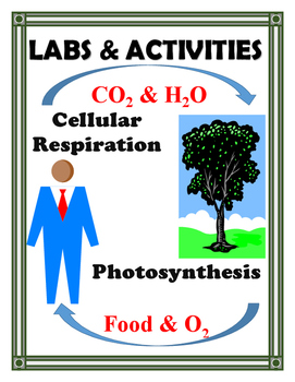 CELL PROCESSES PHOTOSYNTHESIS & CELLULAR RESPIRATION
