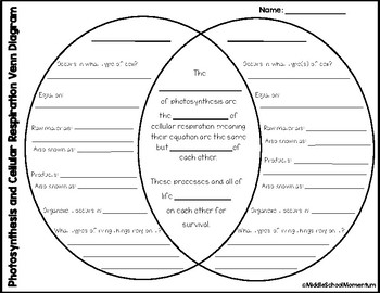 Photosynthesis And Cellular Respiration Venn Diagram By