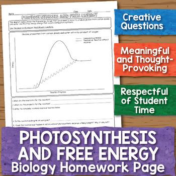 Photosynthesis and Free Energy Biology Homework Worksheet