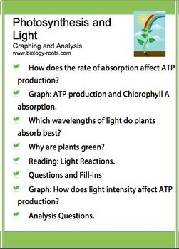 Photosynthesis- Light Absorption and ATP
