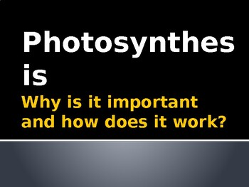 Photosynthesis and Macromolecules
