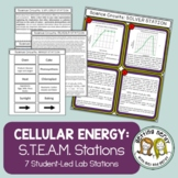 Photosynthesis & Respiration - Science Centers / Lab Stations - Cell Energy