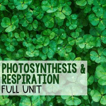 Photosynthesis and Respiration - BUNDLE