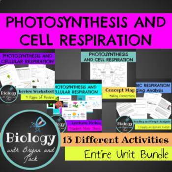 Photosynthesis and Respiration Bundle