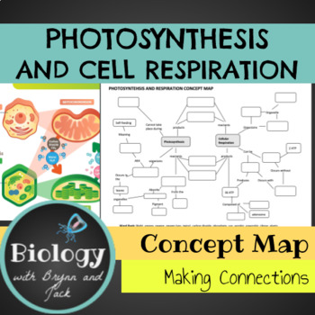 Photosynthesis Concept Map Biology