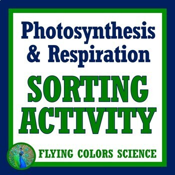 Photosynthesis Respiration Cut Outs Activity Middle School Interactive Notebook