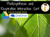 Photosynthesis and Cellular Respiration Digital Sort Activity