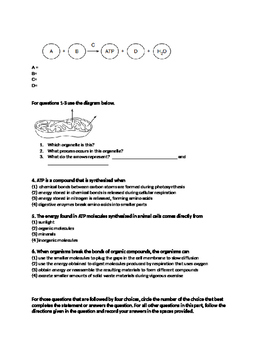 Photosynthesis and Respiration (Living Environment NYS Regents)