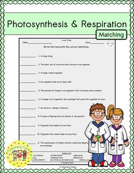 Photosynthesis and Respiration Matching