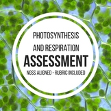 Photosynthesis and Respiration NGSS Assessment