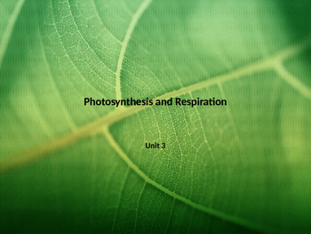 Photosynthesis and Respiration PowerPoint