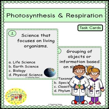 Photosynthesis and Respiration Task Cards