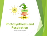 Photosynthesis and Respiration PowerPoint Teaching Pack