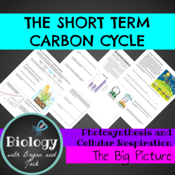 Photosynthesis and Respiration: The Big Picture (Carbon Cycle)