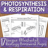 Photosynthesis and Respiration Unit Homework Page Bundle