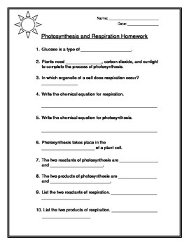 Photosynthesis and Respiration Warm-up and Homework Sheets