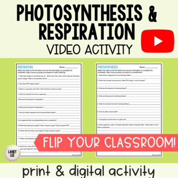 Photosynthesis and Respiration - Practice