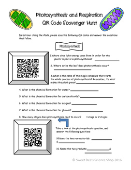 Photosynthesis and Respiration QR Code Scavenger Hunt!