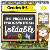Photosynthesis -Interactive Science Notebook foldable