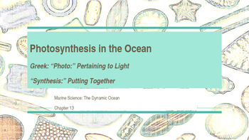 Photosynthesis in the Ocean