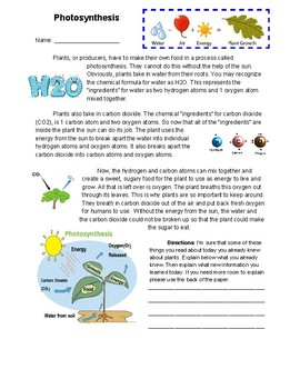Photosynthesis information and practice worksheet