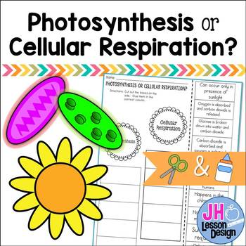 Photosynthesis or Cellular Respiration? Cut and Paste Sorting Activity