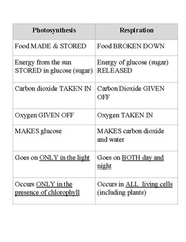 Photosynthesis versus Respiration
