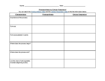 Photosynthesis vs. Cellular Respiration Graphic Organizer & Essay