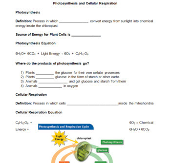 Photosynthesis vs Cellular Respiration -- PowerPoint, Notes, Chlorophyll Review