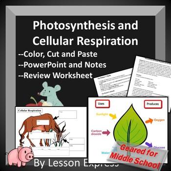 Photosynthesis Vs Cellular Respiration Teaching Resources