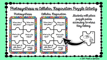 Photosynthesis vs Cellular Respiration Puzzle in Google Slides