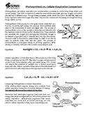 Photosynthesis vs Cellular Respiration - Reading & Comparison Chart
