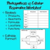 Photosynthesis vs. Cellular Respiration Worksheet