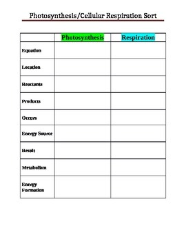 Photosynthesis/Cellular Respiration Sort