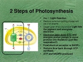 Photosynthesis/Respiration Honors Powerpoint