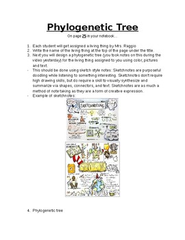 Phylogenetic Trees Teaching Resources Teachers Pay Teachers