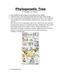 Phylogenetic Tree