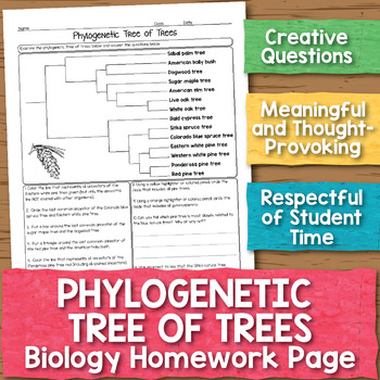Phylogenetic Tree Biology Homework Worksheet