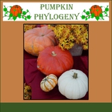 Phylogenetic Tree Cladogram Project Worksheet Taxonomy Activity  - Thanksgiving