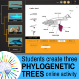 Phylogenetic Trees: Guide for 'All in the Family' online -