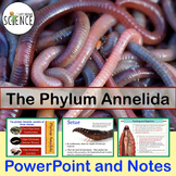 Phylum Annelida (Earthworm) Powerpoint and Notes