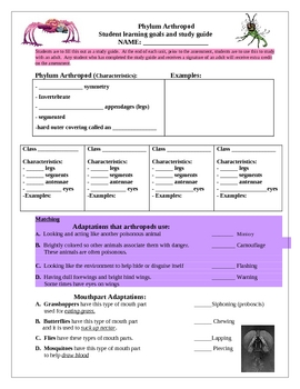 Phylum Arthropoda Study Guide (Learning Goals)