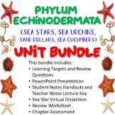 Phylum Echinodermata Unit Bundle (Sea Stars, Sea Urchins, Sand Dollars, etc.)