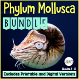 Phylum Mollusca Bundle | Printable and Digital Distance Learning