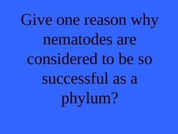 Phylum Nematoda (Roundworms) Jeopardy Review PowerPoint