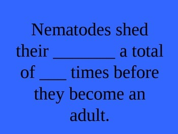 Phylum Nematoda (Roundworms) Jeopardy Review PowerPoint