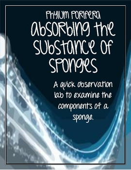 Phylum Porifera - Absorbing the Substance of Sponges