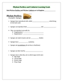 Phylum Porifera and Cnidaria Learning Goals (Study Guide)
