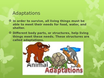 SOL 4.5: Structural (Physical) Adaptations Powerpoint